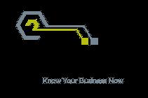Iviis Logo