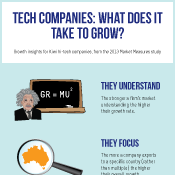 Tech Companies: What does it take to grow (five themes)?