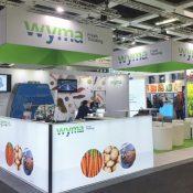 Wyma case study – 280% lead growth