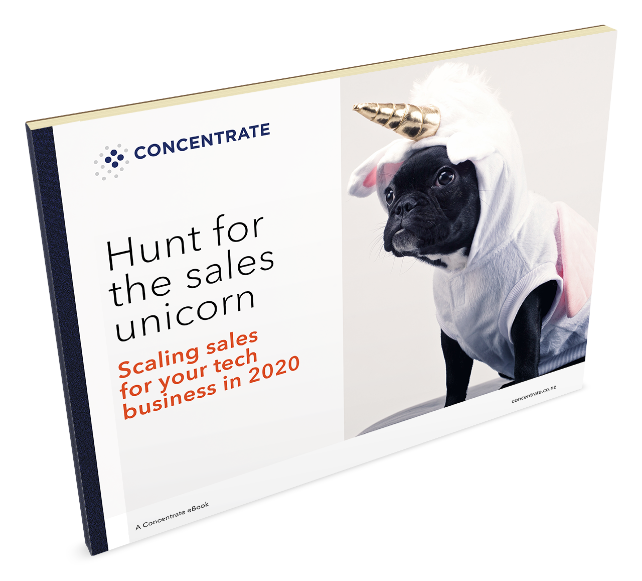 Hunt for the Sales Unicorn